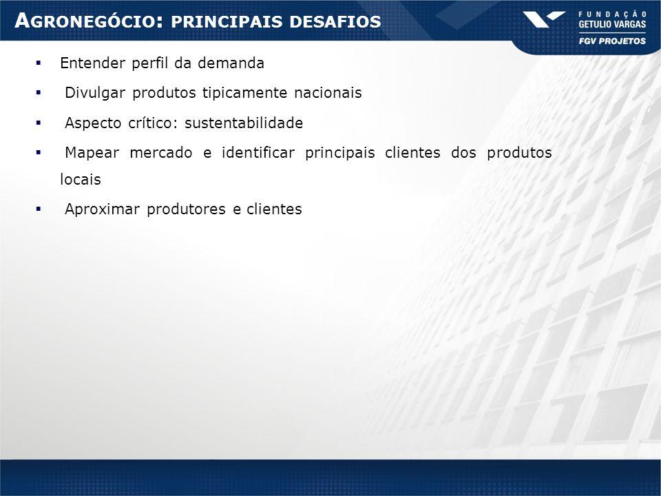 A GRONEGÓCIO : PRINCIPAIS DESAFIOS Entender perfil da demanda Divulgar produtos tipicamente nacionais Aspecto crítico: sustentabilidade Mapear mercado