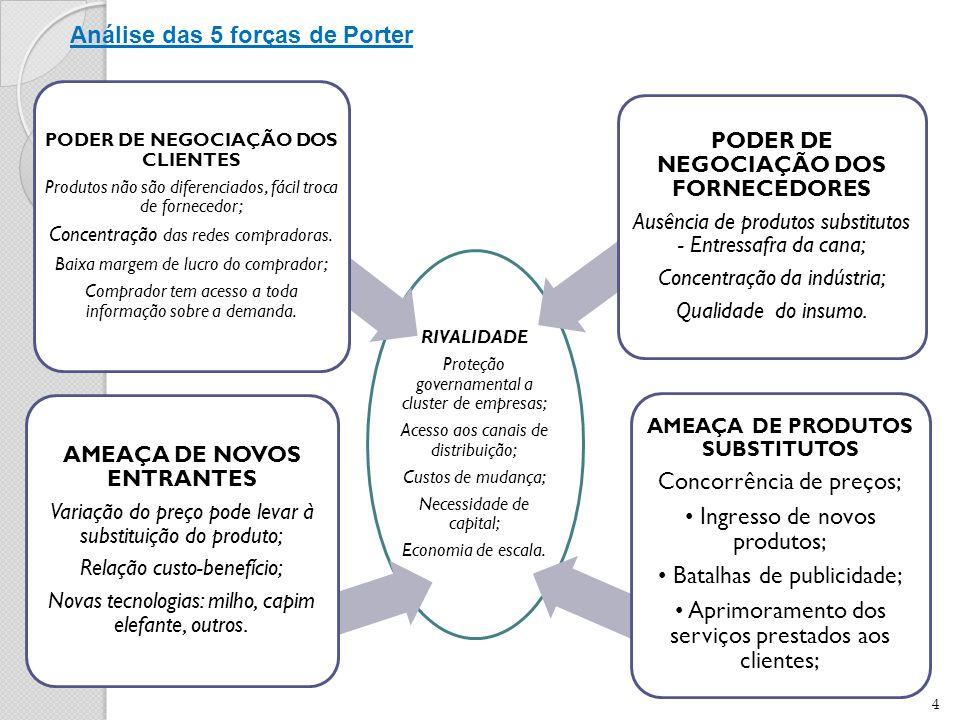 4 RIVALIDADE Proteção governamental a cluster de empresas; Acesso aos canais de distribuição; Custos de mudança; Necessidade de capital; Economia de escala.