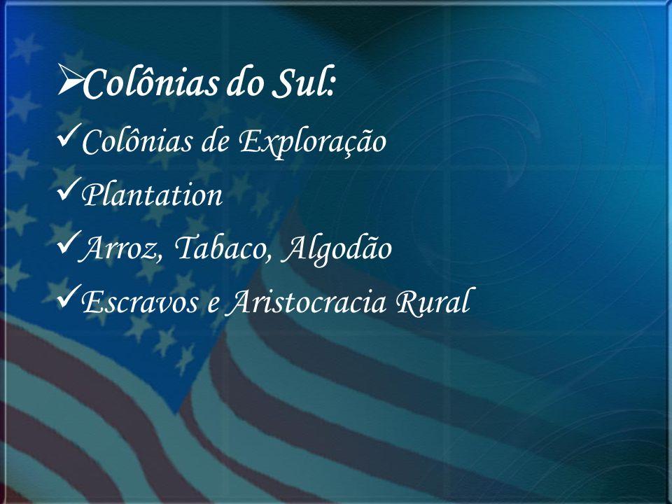 Colônias do Sul: Colônias de Exploração Plantation Arroz, Tabaco, Algodão Escravos e Aristocracia Rural