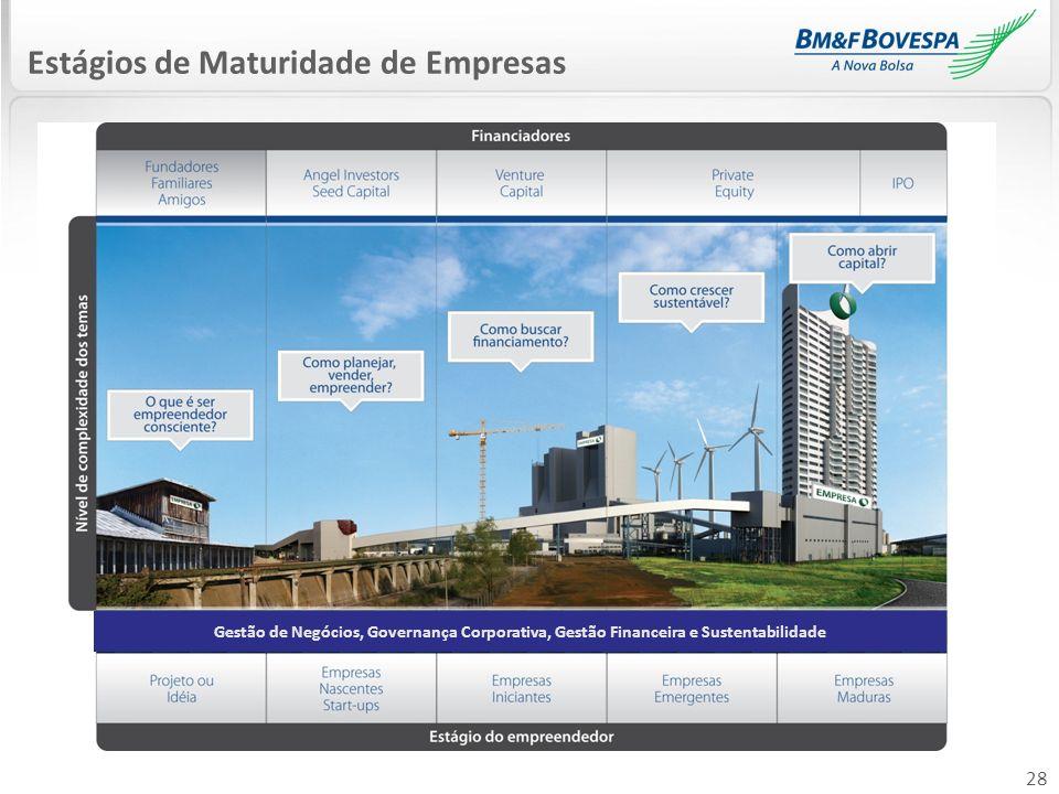 28 Estágios de Maturidade de Empresas Gestão de Negócios, Governança Corporativa, Gestão Financeira e Sustentabilidade