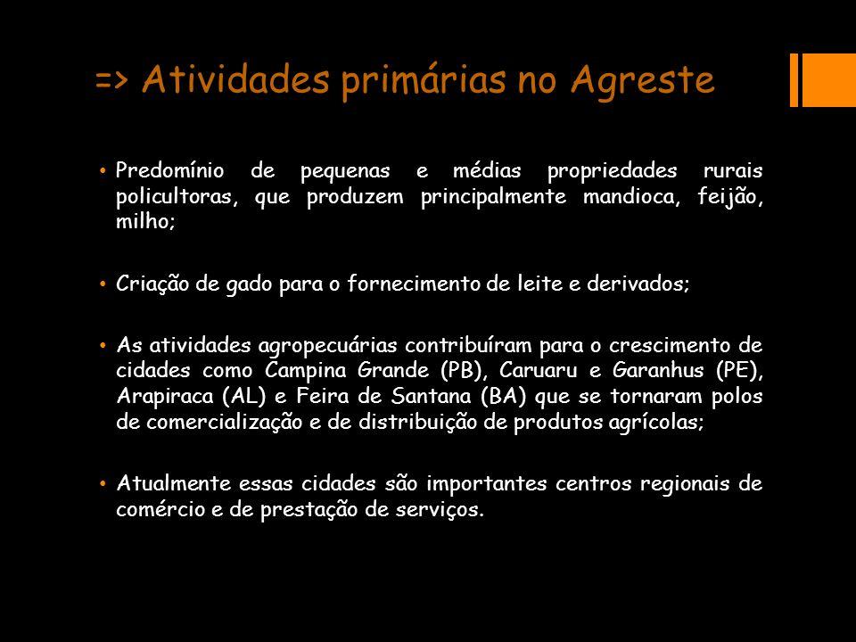 => Atividades primárias no Agreste Predomínio de pequenas e médias propriedades rurais policultoras, que produzem principalmente mandioca, feijão, mil