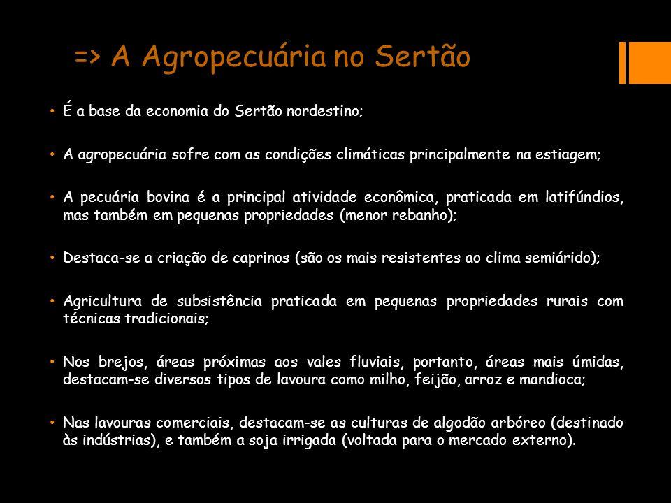 => A Agropecuária no Sertão É a base da economia do Sertão nordestino; A agropecuária sofre com as condições climáticas principalmente na estiagem; A