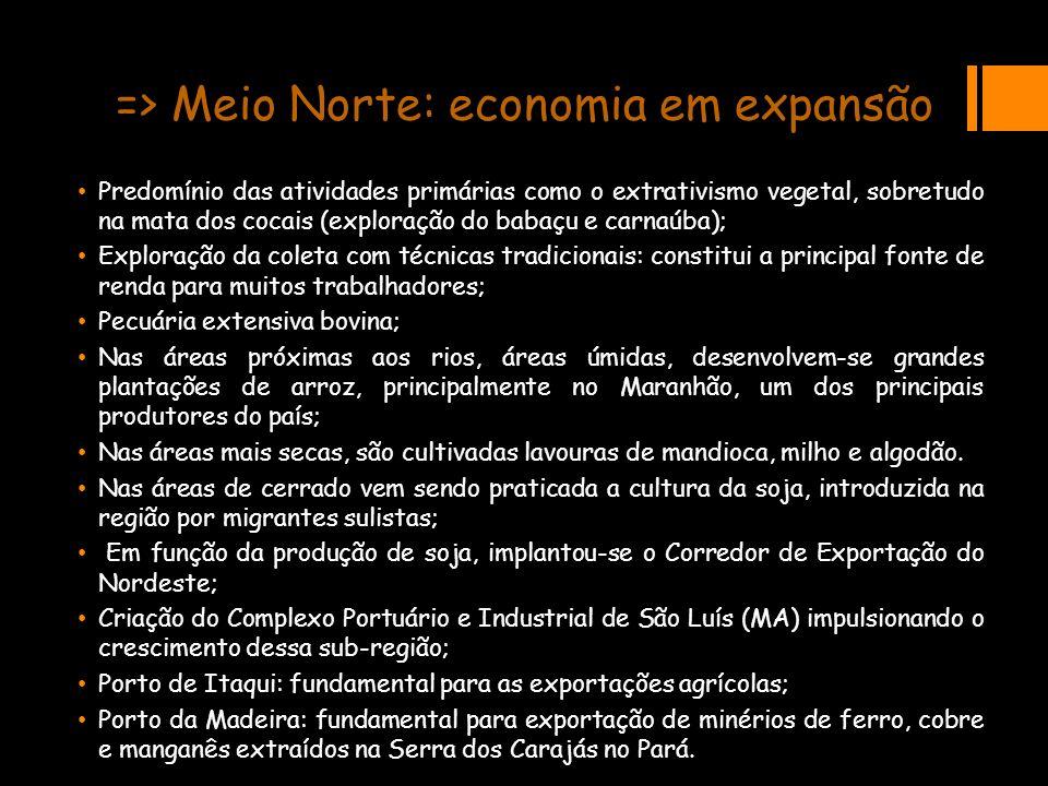 => Meio Norte: economia em expansão Predomínio das atividades primárias como o extrativismo vegetal, sobretudo na mata dos cocais (exploração do babaç