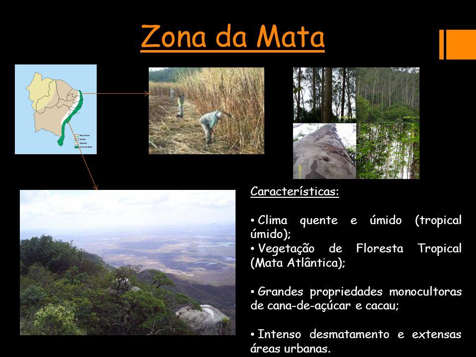 Zona da MataCaracterísticas: Clima quente e úmido (tropical úmido); Clima quente e úmido (tropical úmido); Vegetação de Floresta Tropical (Mata Atlânt