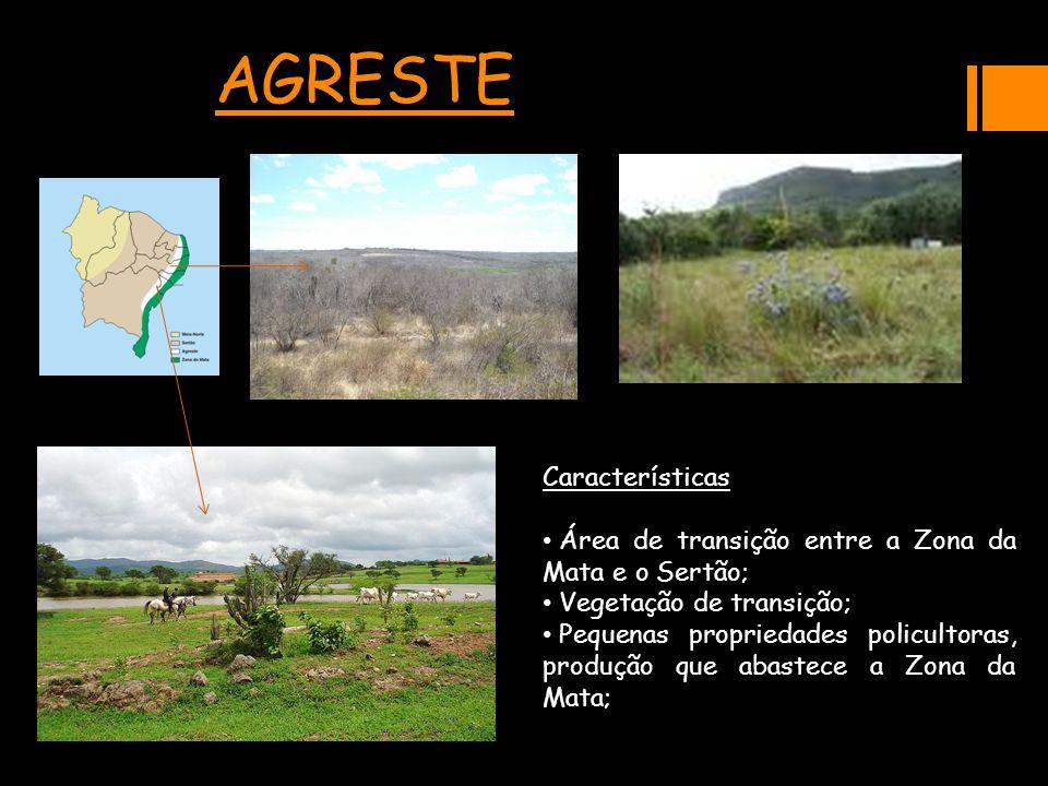 AGRESTECaracterísticas Área de transição entre a Zona da Mata e o Sertão; Área de transição entre a Zona da Mata e o Sertão; Vegetação de transição; V