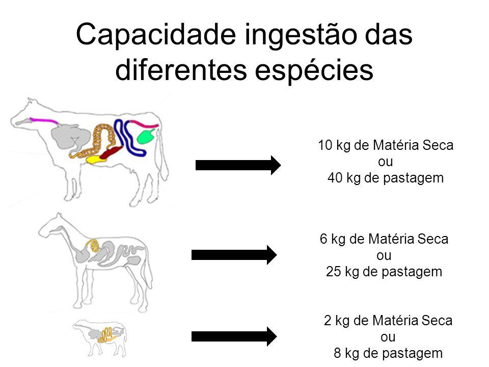 Capacidade ingestão das diferentes espécies 10 kg de Matéria Seca ou 40 kg de pastagem 6 kg de Matéria Seca ou 25 kg de pastagem 2 kg de Matéria Seca