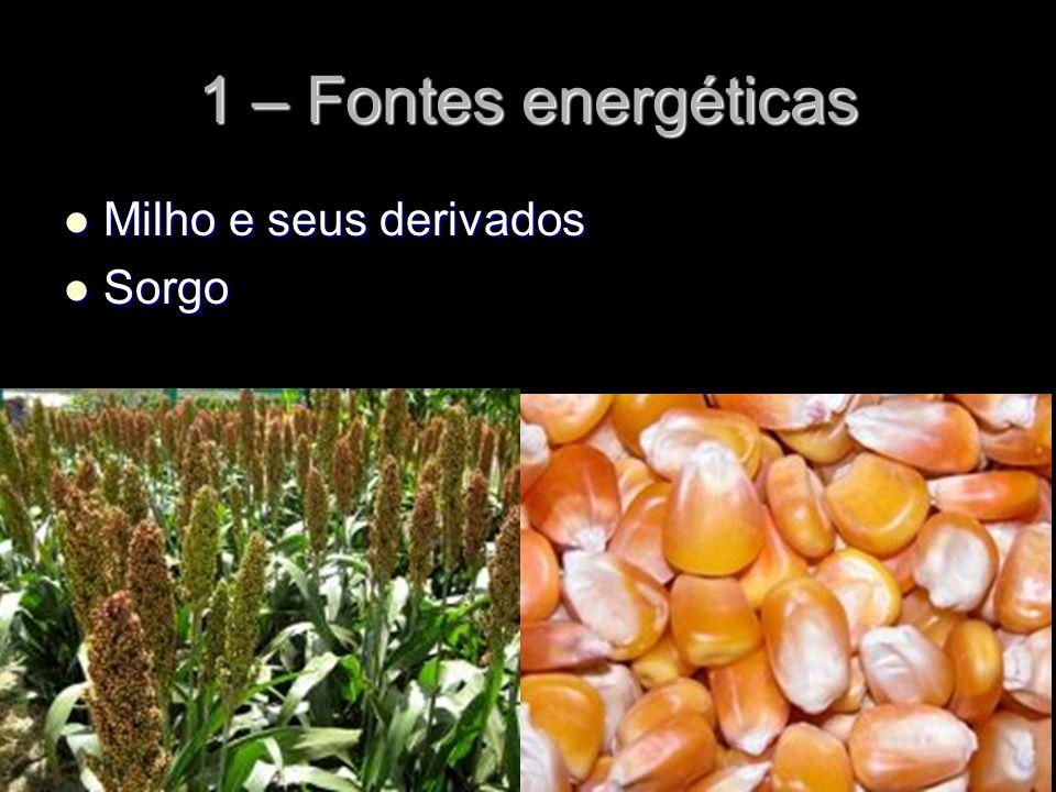 1 – Fontes energéticas Milho e seus derivados Milho e seus derivados Sorgo Sorgo