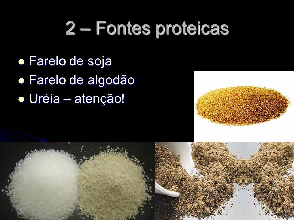 2 – Fontes proteicas Farelo de soja Farelo de soja Farelo de algodão Farelo de algodão Uréia – atenção! Uréia – atenção!