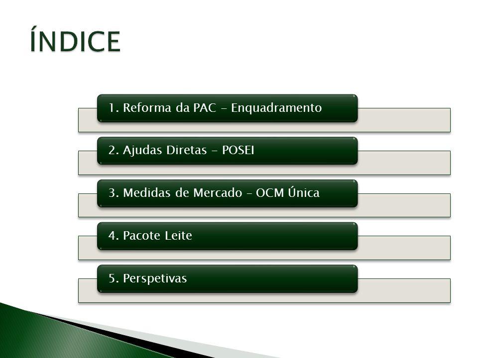 1. Reforma da PAC - Enquadramento2. Ajudas Diretas - POSEI3. Medidas de Mercado – OCM Única4. Pacote Leite5. Perspetivas