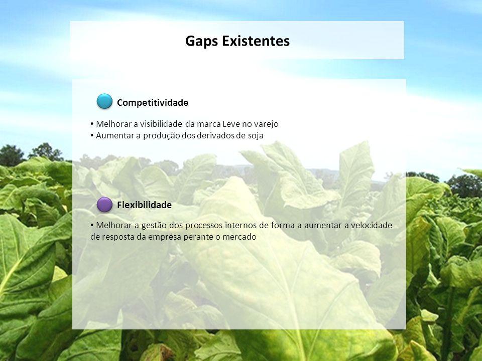 Gaps Existentes Competitividade Melhorar a visibilidade da marca Leve no varejo Aumentar a produção dos derivados de soja Flexibilidade Melhorar a ges