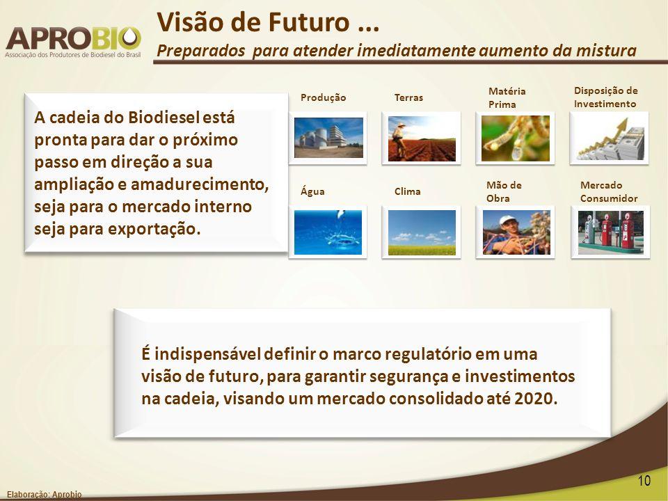 É indispensável definir o marco regulatório em uma visão de futuro, para garantir segurança e investimentos na cadeia, visando um mercado consolidado