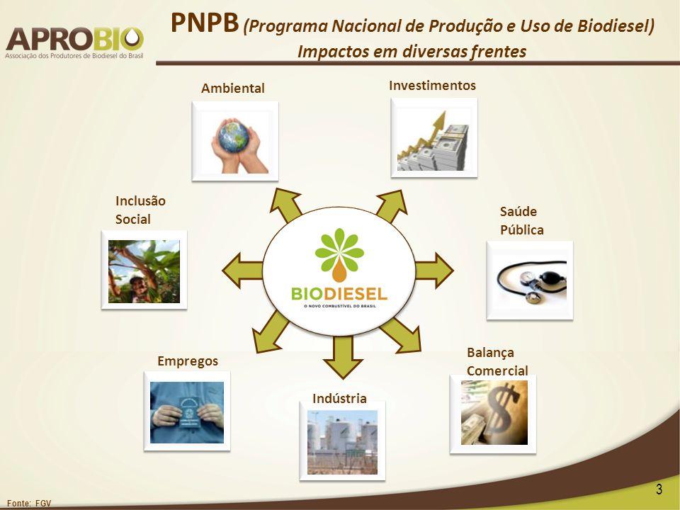 PNPB (Programa Nacional de Produção e Uso de Biodiesel) Impactos em diversas frentes Empregos Indústria Balança Comercial Ambiental Saúde Pública Inve