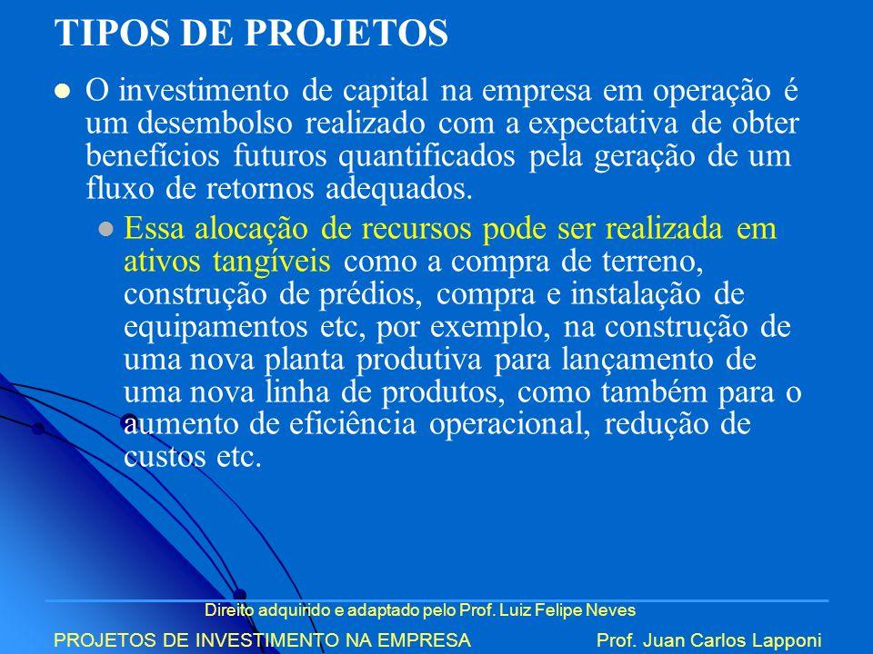Direito adquirido e adaptado pelo Prof. Luiz Felipe Neves PROJETOS DE INVESTIMENTO NA EMPRESAProf. Juan Carlos Lapponi O investimento de capital na em