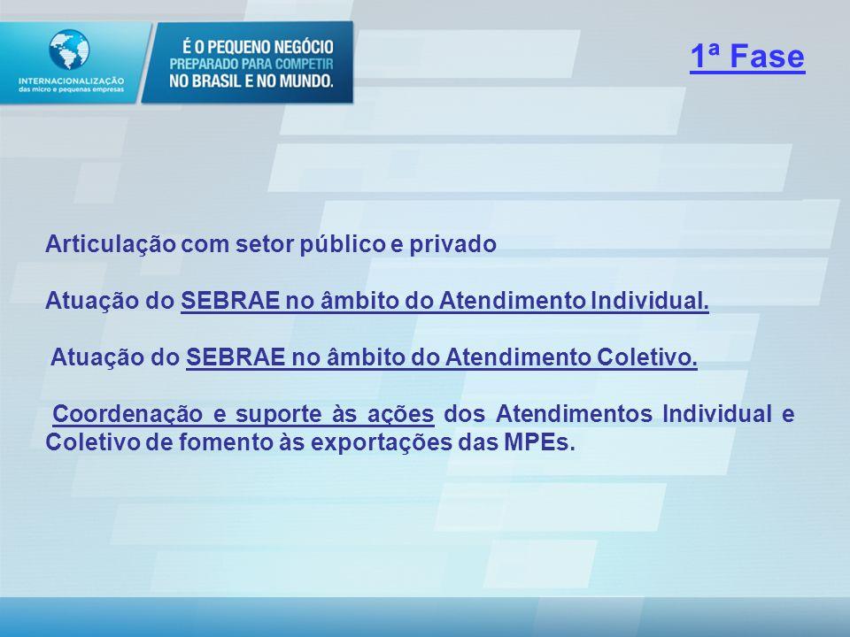 I. PRIMEIRA FASE A primeira fase contempla projetos institucionais e finalísticos que compõem as principais linhas de ação (elaboração de metodologias