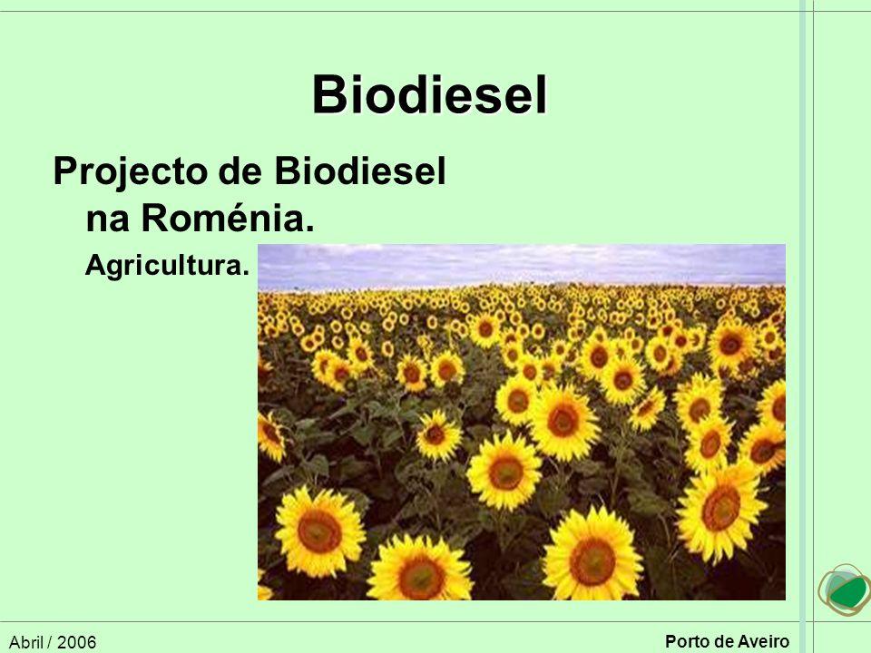 Abril / 2006 Porto de Aveiro Projecto de Biodiesel na Roménia. Agricultura. Biodiesel