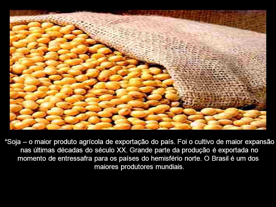 *Soja – o maior produto agrícola de exportação do país.