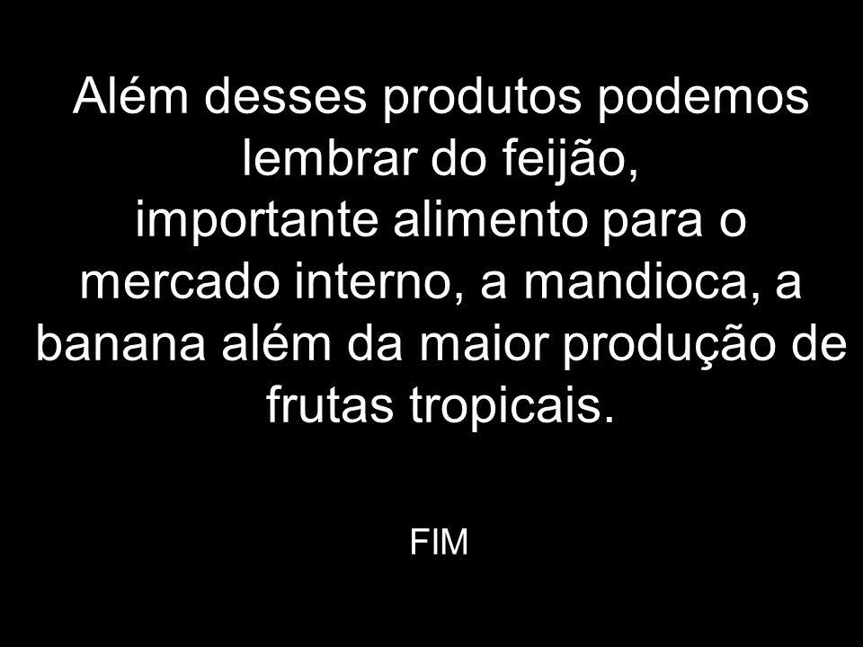 Além desses produtos podemos lembrar do feijão, importante alimento para o mercado interno, a mandioca, a banana além da maior produção de frutas tropicais.