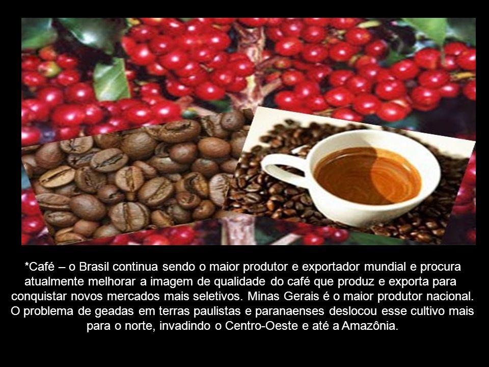 *Café – o Brasil continua sendo o maior produtor e exportador mundial e procura atualmente melhorar a imagem de qualidade do café que produz e exporta para conquistar novos mercados mais seletivos.