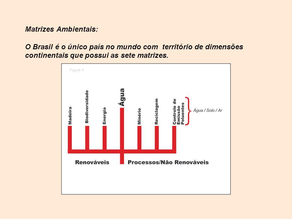 Matrizes Ambientais: O Brasil é o único país no mundo com território de dimensões continentais que possui as sete matrizes.