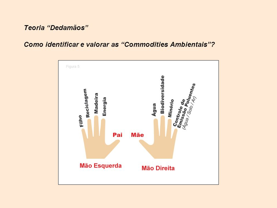 Teoria Dedamãos Como identificar e valorar as Commodities Ambientais?