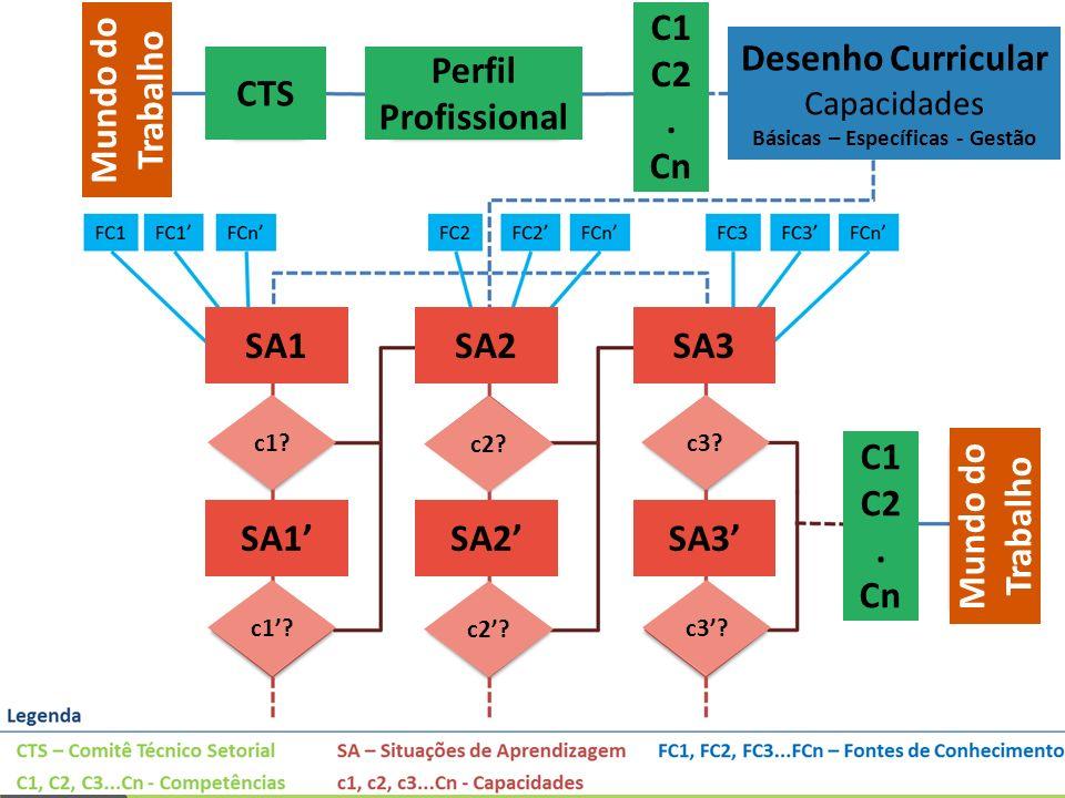 Mundo do Trabalho Mundo do Trabalho Mundo do Trabalho Mundo do Trabalho Mundo do Trabalho CTS Perfil Profissional C1 C2. Cn C1 C2. Cn Desenho Curricul