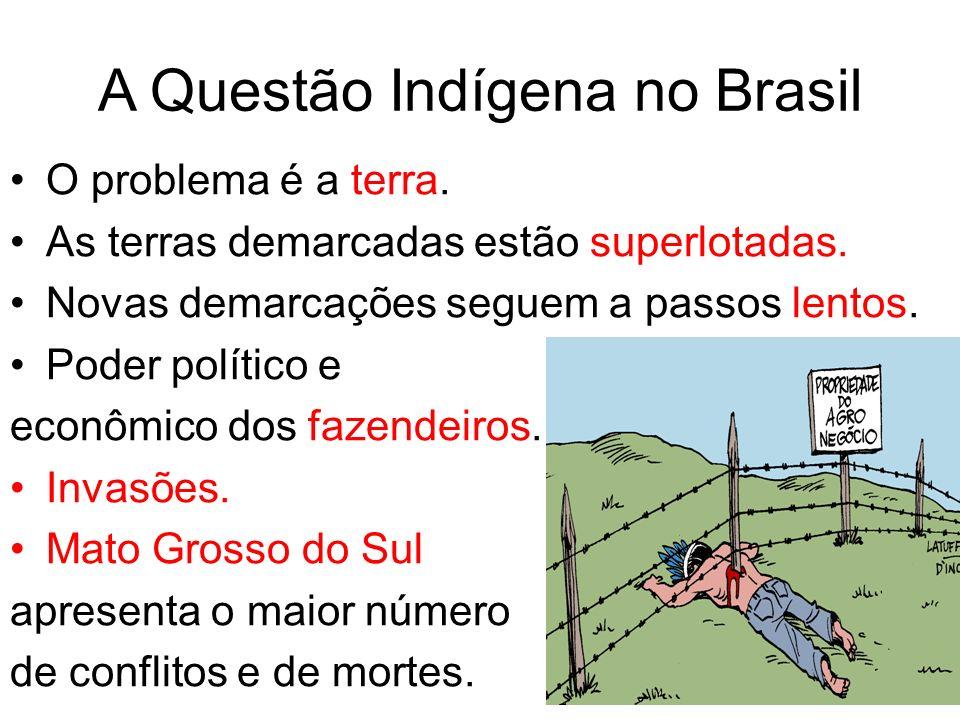 A Questão Indígena no Brasil O problema é a terra. As terras demarcadas estão superlotadas. Novas demarcações seguem a passos lentos. Poder político e