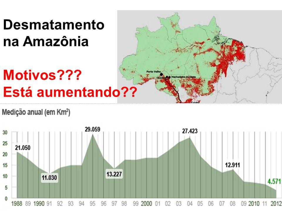 Desmatamento na Amazônia Motivos??? Está aumentando??