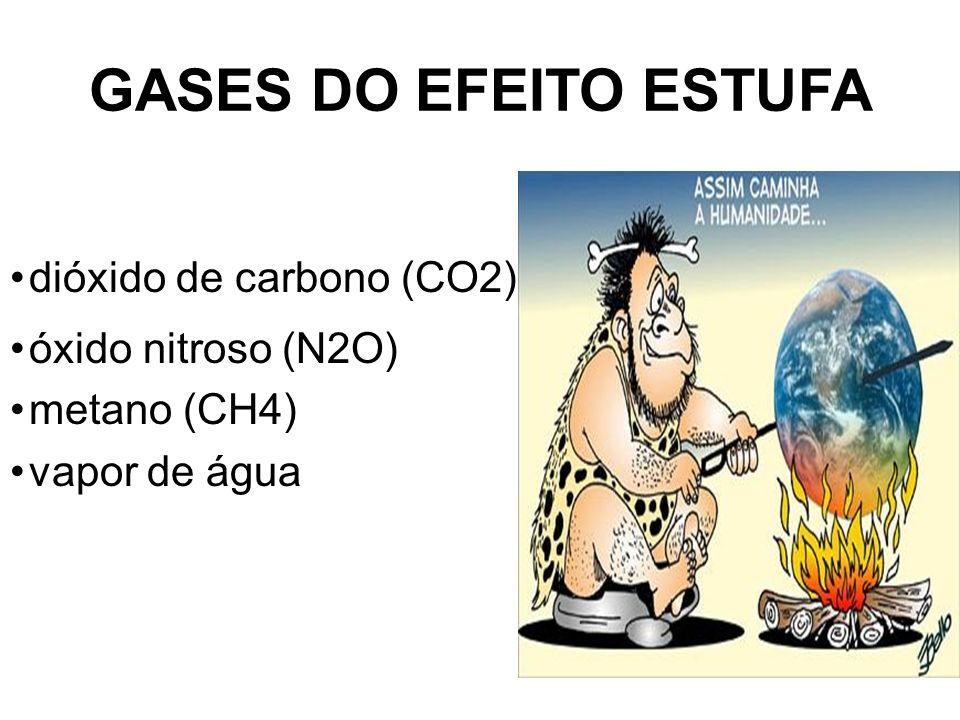 GASES DO EFEITO ESTUFA dióxido de carbono (CO2) óxido nitroso (N2O) metano (CH4) vapor de água