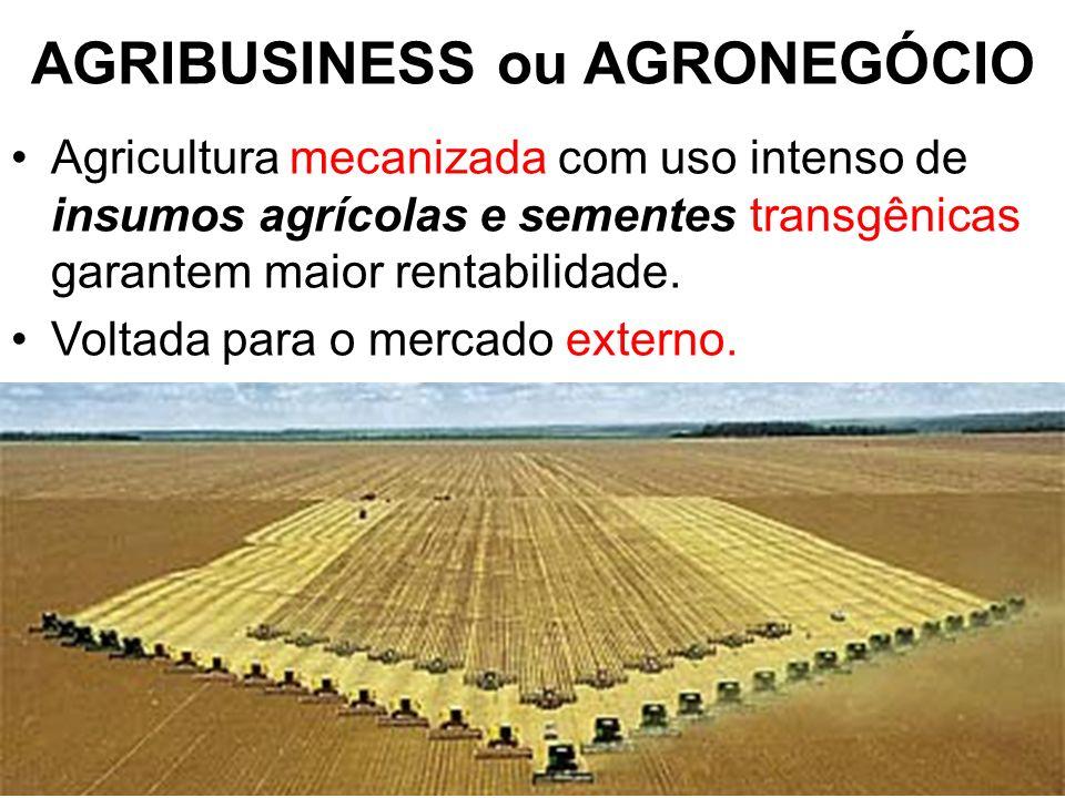 AGRIBUSINESS ou AGRONEGÓCIO Agricultura mecanizada com uso intenso de insumos agrícolas e sementes transgênicas garantem maior rentabilidade. Voltada