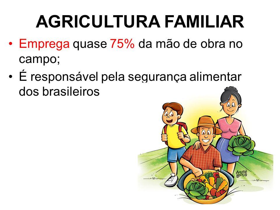 AGRICULTURA FAMILIAR Emprega quase 75% da mão de obra no campo; É responsável pela segurança alimentar dos brasileiros