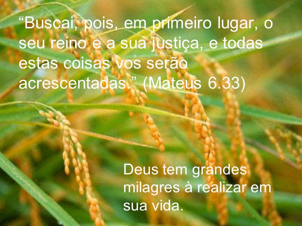 Buscai, pois, em primeiro lugar, o seu reino e a sua justiça, e todas estas coisas vos serão acrescentadas. (Mateus 6.33) Deus tem grandes milagres à