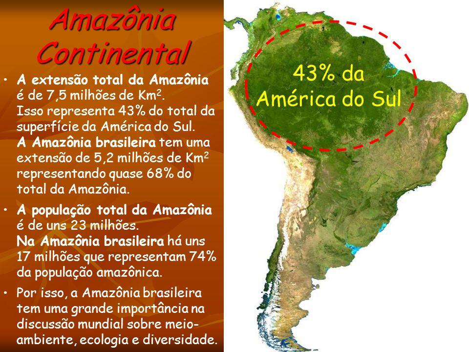 43% da América do Sul A extensão total da Amazônia é de 7,5 milhões de Km 2. Isso representa 43% do total da superfície da América do Sul. A Amazônia