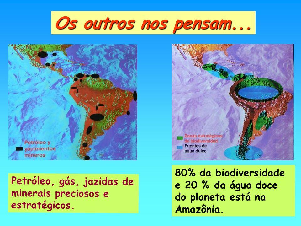 Petróleo, gás, jazidas de minerais preciosos e estratégicos. Os outros nos pensam... 80% da biodiversidade e 20 % da água doce do planeta está na Amaz