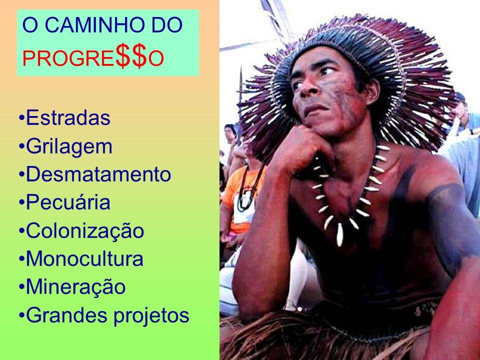 O CAMINHO DO PROGRE $$ O Estradas Grilagem Desmatamento Pecuária Colonização Monocultura Mineração Grandes projetos