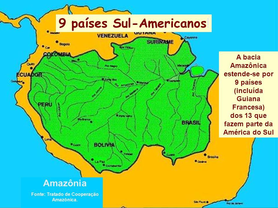 A bacia Amazônica estende-se por 9 países (incluída Guiana Francesa) dos 13 que fazem parte da América do Sul Amazônia Fonte: Tratado de Cooperação Amazônica.