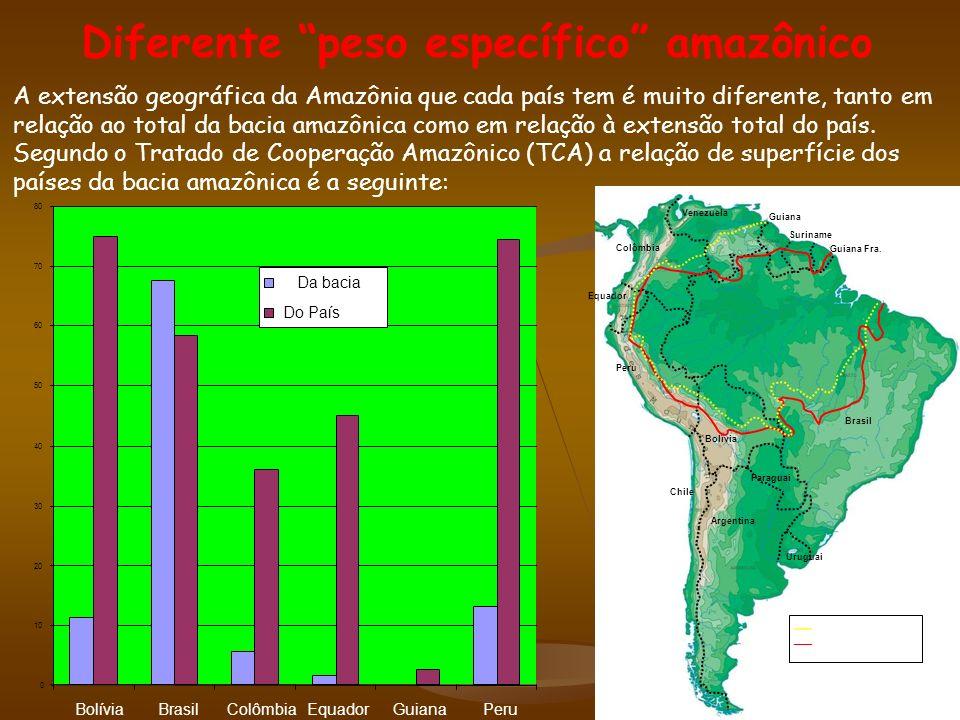 A extensão geográfica da Amazônia que cada país tem é muito diferente, tanto em relação ao total da bacia amazônica como em relação à extensão total do país.