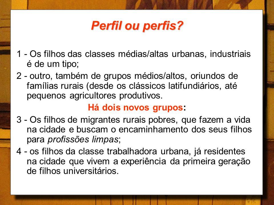 Perfil ou perfis? 1 - Os filhos das classes médias/altas urbanas, industriais é de um tipo; 2 - outro, também de grupos médios/altos, oriundos de famí