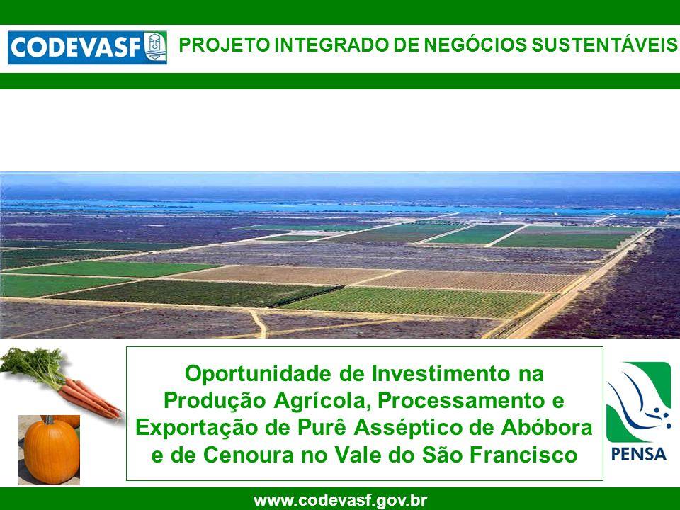 1 www.codevasf.gov.br Oportunidade de Investimento na Produção Agrícola, Processamento e Exportação de Purê Asséptico de Abóbora e de Cenoura no Vale