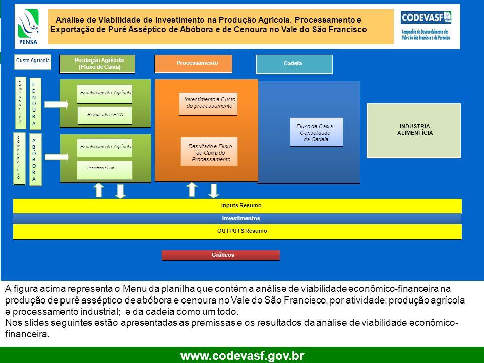 12 www.codevasf.gov.br A figura acima representa o Menu da planilha que contém a análise de viabilidade econômico-financeira na produção de purê assép