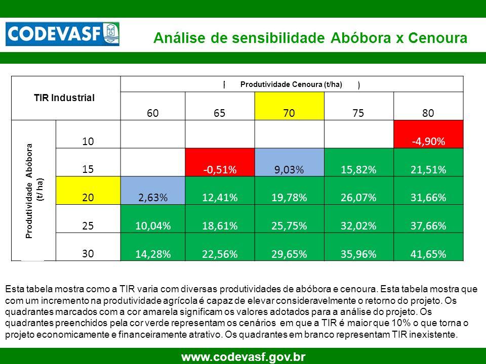 24 www.codevasf.gov.br Análise de sensibilidade Abóbora x Cenoura Esta tabela mostra como a TIR varia com diversas produtividades de abóbora e cenoura