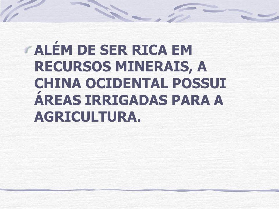 ALÉM DE SER RICA EM RECURSOS MINERAIS, A CHINA OCIDENTAL POSSUI ÁREAS IRRIGADAS PARA A AGRICULTURA.