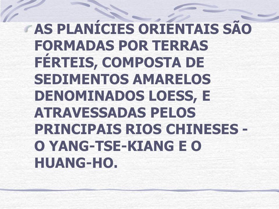 AS PLANÍCIES ORIENTAIS SÃO FORMADAS POR TERRAS FÉRTEIS, COMPOSTA DE SEDIMENTOS AMARELOS DENOMINADOS LOESS, E ATRAVESSADAS PELOS PRINCIPAIS RIOS CHINES