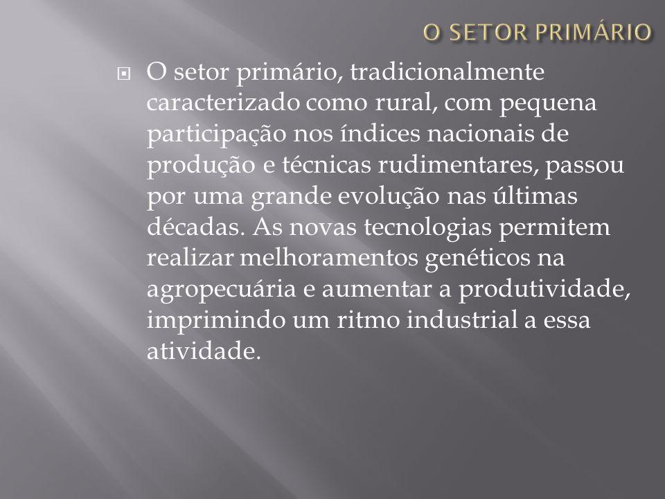 O setor primário, tradicionalmente caracterizado como rural, com pequena participação nos índices nacionais de produção e técnicas rudimentares, passo