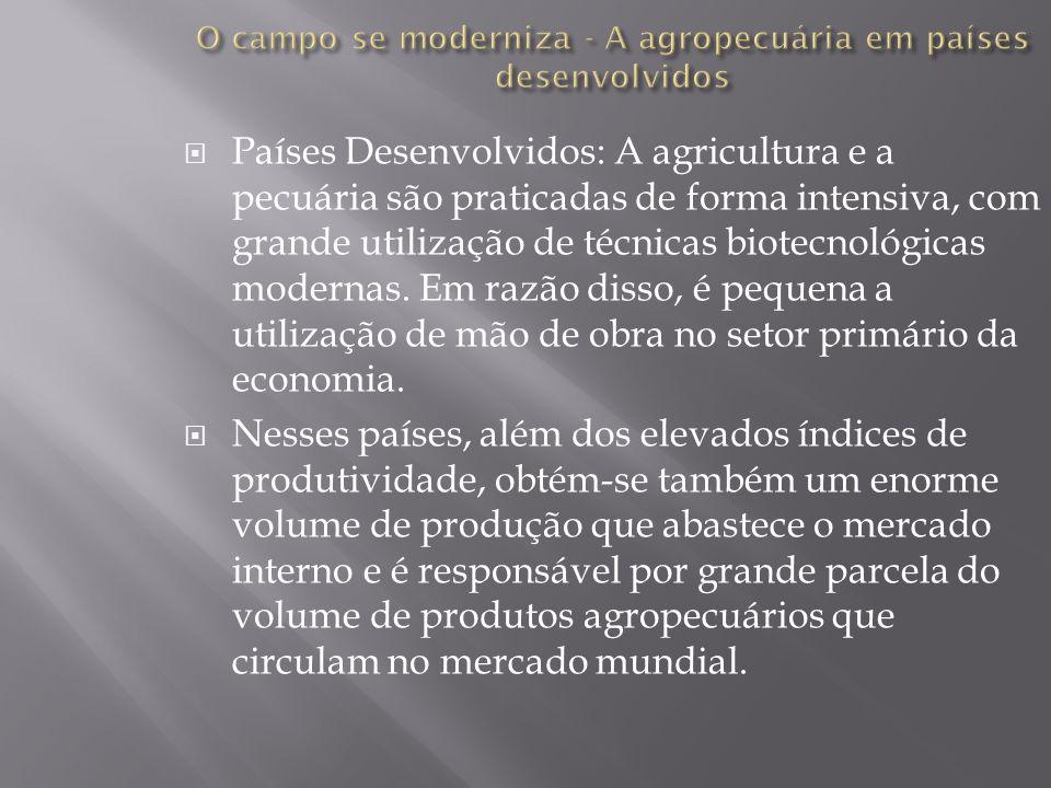 Países Desenvolvidos: A agricultura e a pecuária são praticadas de forma intensiva, com grande utilização de técnicas biotecnológicas modernas. Em raz