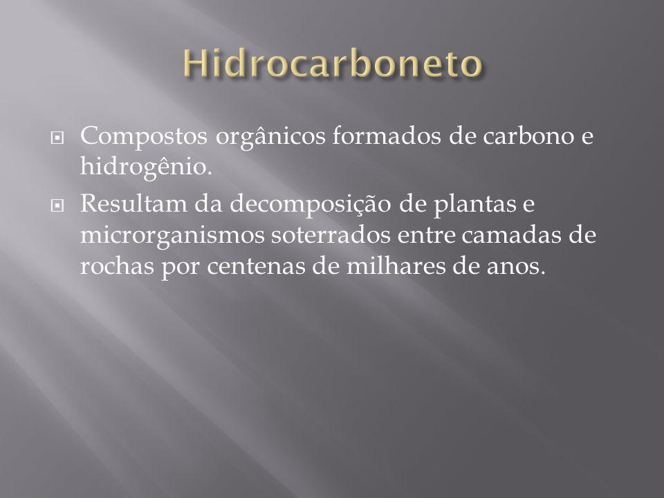 Compostos orgânicos formados de carbono e hidrogênio. Resultam da decomposição de plantas e microrganismos soterrados entre camadas de rochas por cent