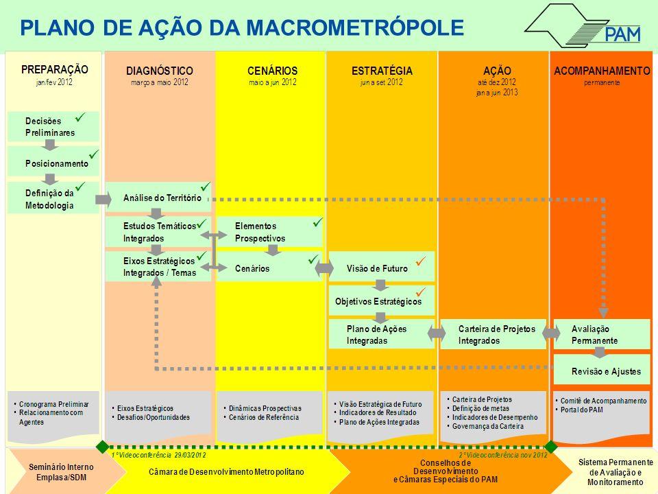 PLANO DE AÇÃO DA MACROMETRÓPOLE
