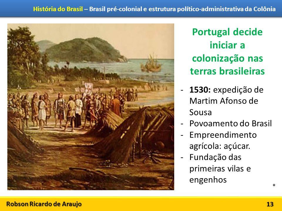 Robson Ricardo de Araujo História do Brasil – Brasil pré-colonial e estrutura político-administrativa da Colônia 13 Portugal decide iniciar a coloniza