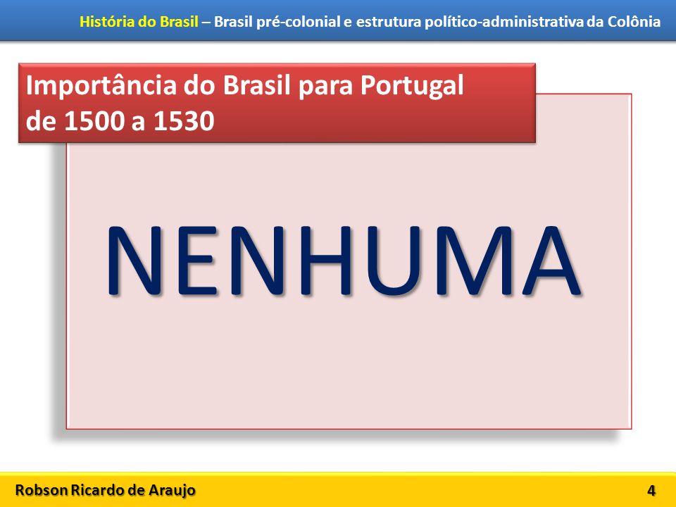 Robson Ricardo de Araujo História do Brasil – Brasil pré-colonial e estrutura político-administrativa da Colônia 4 Importância do Brasil para Portugal de 1500 a 1530 Importância do Brasil para Portugal de 1500 a 1530 NENHUMA