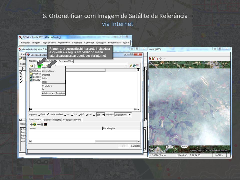 Primeiro, clique na flechinha preta indicada a esquerda e a seguir em Web no menu lateral para acessar geodados via Internet.