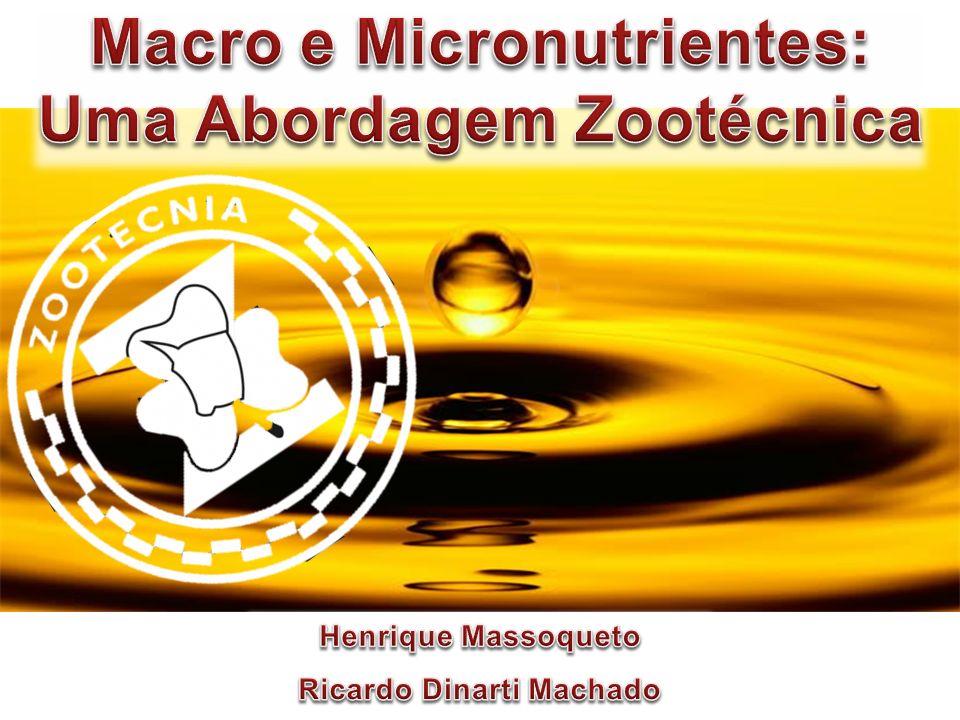 Gado de corte 1.2 Sistema Extensivo Baixas nutricionais em períodos de seca Suplementação com sal mineral proteinado Aumenta quantidade de bactérias proteolíticas e celulolíticas em igual proporção Aumenta digestão de fibras